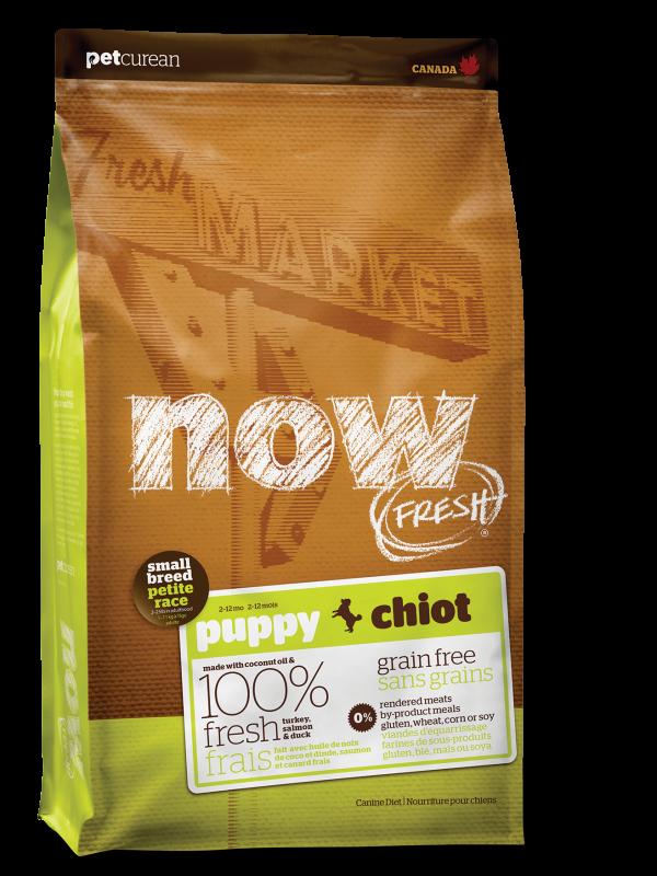 NOW FRESH Grain Free Small Breed Puppy Recipe   25 lb