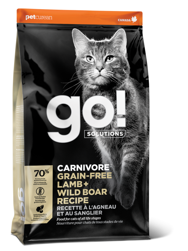 GO! CARNIVORE Grain Free Lamb + Wild Boar Recipe for cats  16 lb